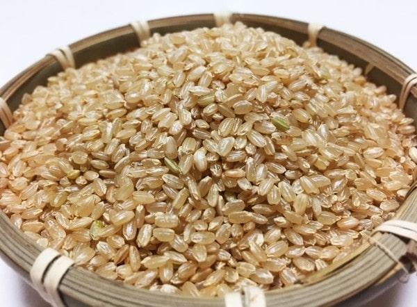 発芽玄米の消化